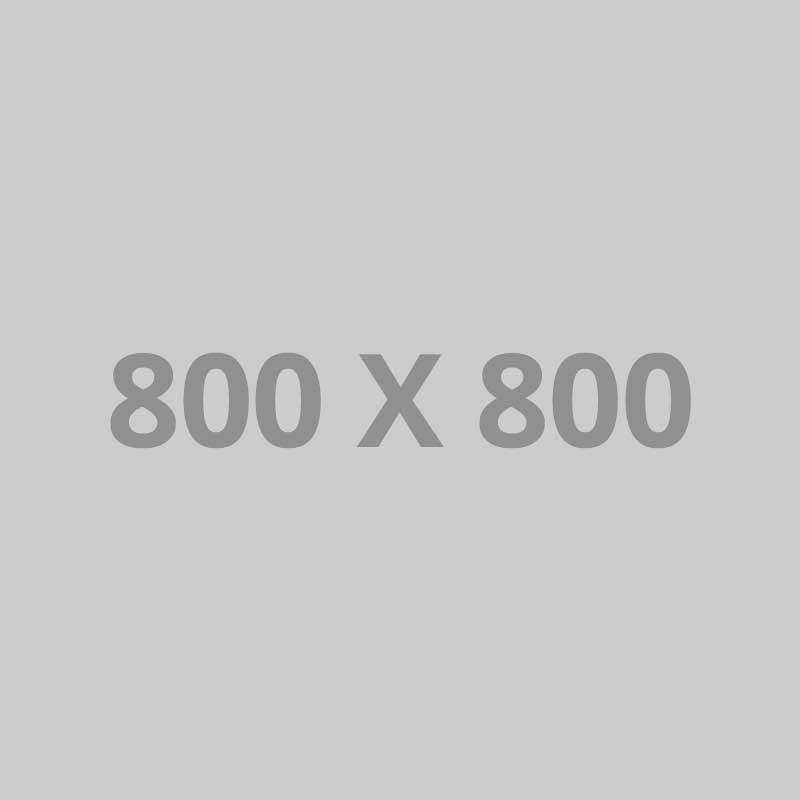pofo 800x800-ph